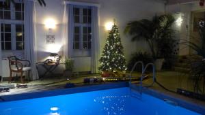 snart-jul